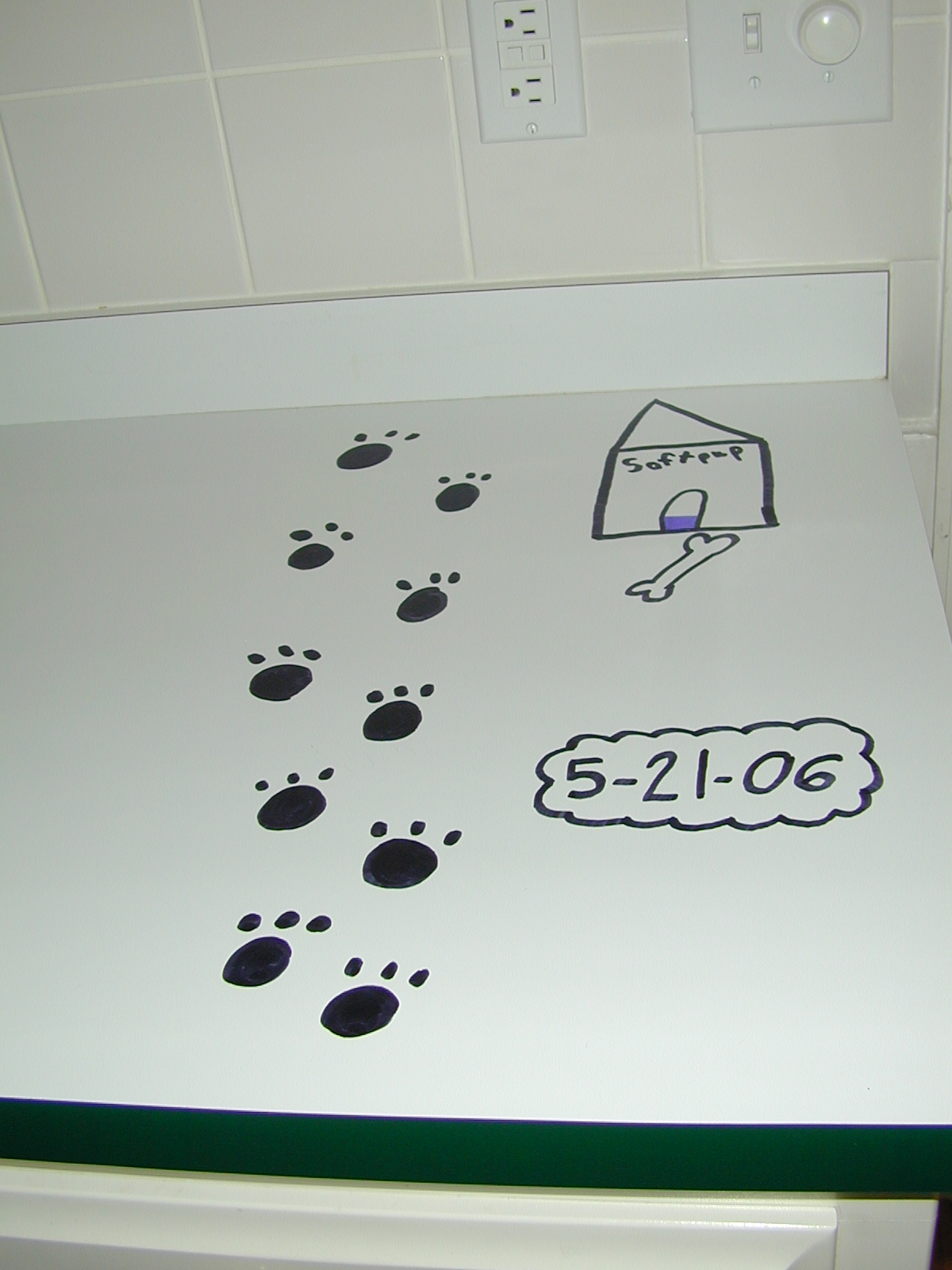 Pawprints from the dog she so dearly wanted (and still wants!)
